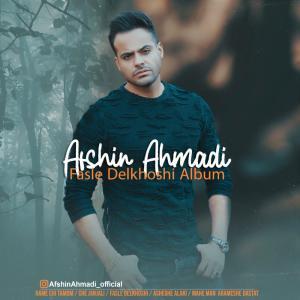 دانلود آلبوم افشین احمدی فصل دلخوشی