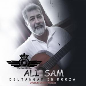 Ali Sam Deltangam In Rooza