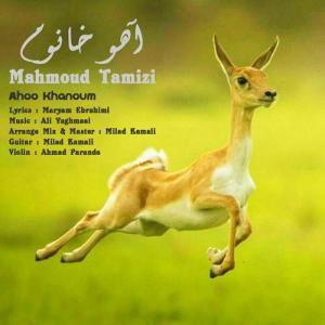 Mahmoud Tamizi Ahoo Khanoum