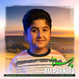 Ali Paknafs Parastar