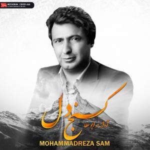 Mohammadreza Sam Konje Del
