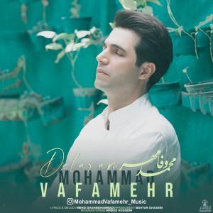 Mohammad Vafamehr Delaram