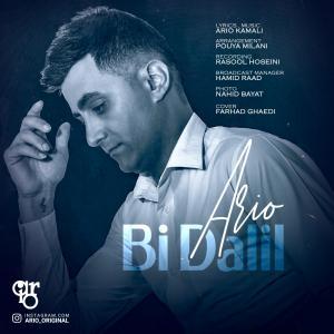 Ario Bi Dalil