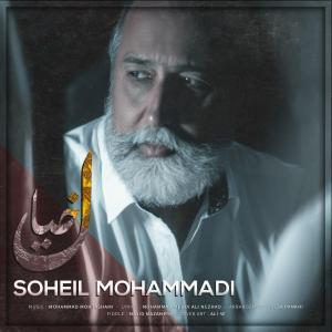 Soheil Mohammadi Khial