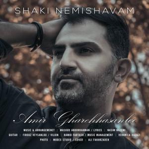 Amir Ghare Hasanloo Shaki Nemihavam