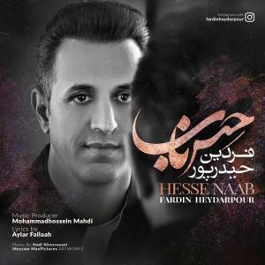 Fardin Heydarpour Hesse Naab