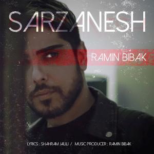 Ramin Bibak Sarzanesh