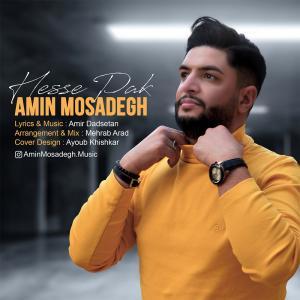 Amin Mosadegh Hesse Pak