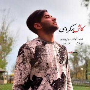 Amirhossein Amiri Kash Bargardi