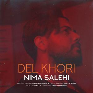 Nima Salehi Delkhori