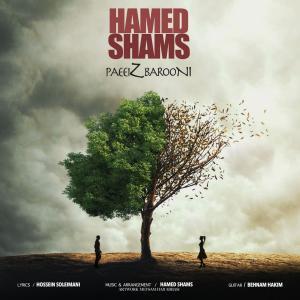 Hamed Shams Paeiz Barooni