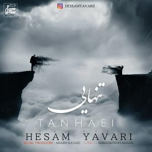 Hesam Yavari Tanhaei