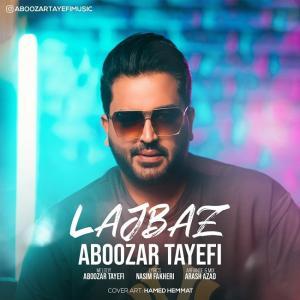 Aboozar Tayefi Lajbaz