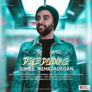 Soheil Mehrzadegan Dele Divoone