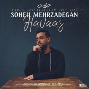 Soheil Mehrzadegan Havaas