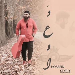 Hossein Seyedi Dava