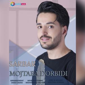 Mojtaba Dorbidi Sarbar