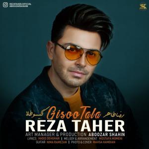 Reza Taher Gisoo Tala