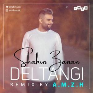 Shahin Banan Deltangi (AMZH Remix)