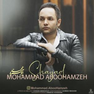 دانلود آهنگ محمد ابوحمزه شاید