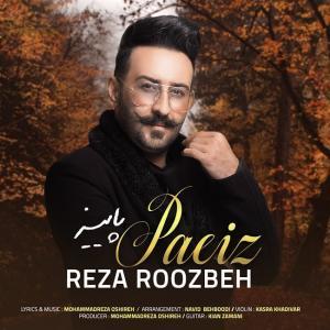 Reza Roozbeh Paeiz