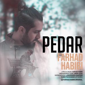 Farhad Habibi Pedar
