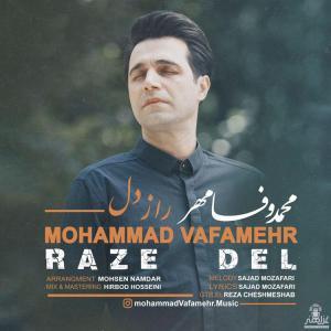 Mohammad Vafamehr Raze Del