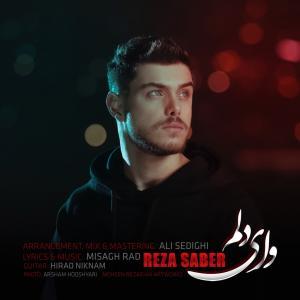 Reza Saber Vay Delam
