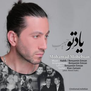 Mohammad Mohebian Yade To