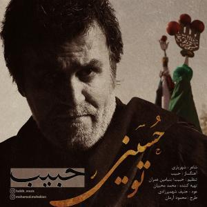 Habib To Hosseini
