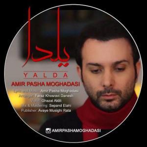 Amir Pasha Moghadasi Yalda