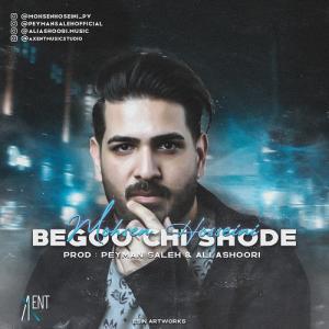 Mohsen Hoseini Begoo Chi Shode