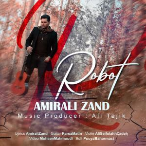 Amirali Zand Robat