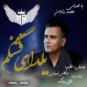 Mohammad Radan Yaldaie Ghashangam