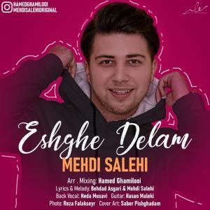 Mehdi Salehi Eshghe Delam