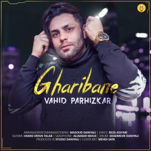 Vahid Parhizkar Gharibane