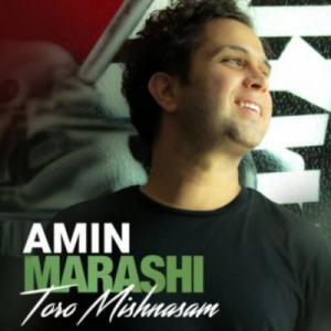 Amin Marashi Toro Mishnasam