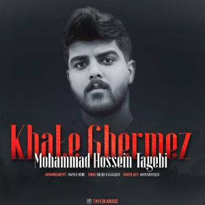 Mohammad Hossein Tayebi Khale Ghermez