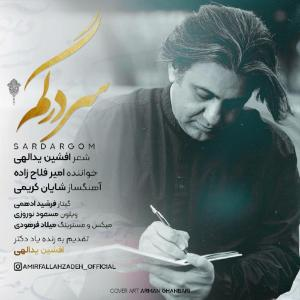 Amir Fallahzadeh Sardargom