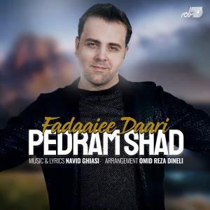 Pedram Shad Fadaaiee Dari