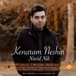 Navid Nik Kenaram Neshin