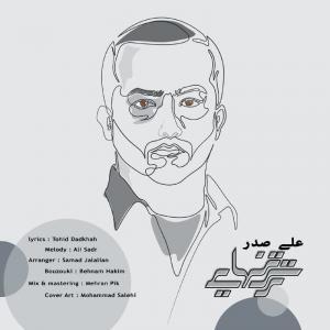 Ali Sadr Tarse Tanhaei