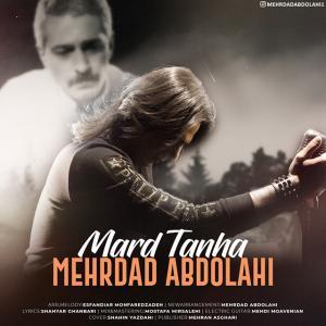 Mehrdad Abdolahi Marde Tanha