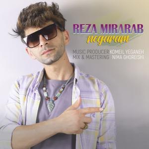 Reza Mirarab Negaram