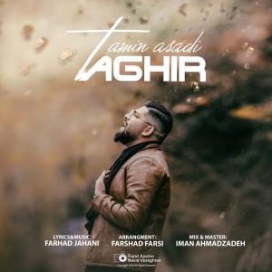 Amin Asadi Taghir