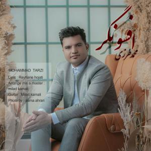 Mohammad Tarzi Afsongar