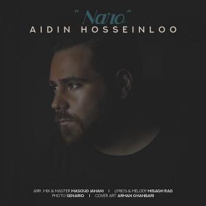 Aidin Hosseinloo Naro