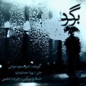 Amir Masoud Momeni Bargard