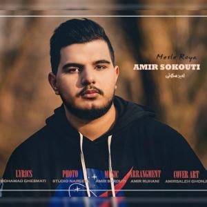 Amir Sokouti Mesle Roya