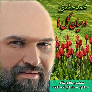Mohammad Heshmati Dar Mian Golha